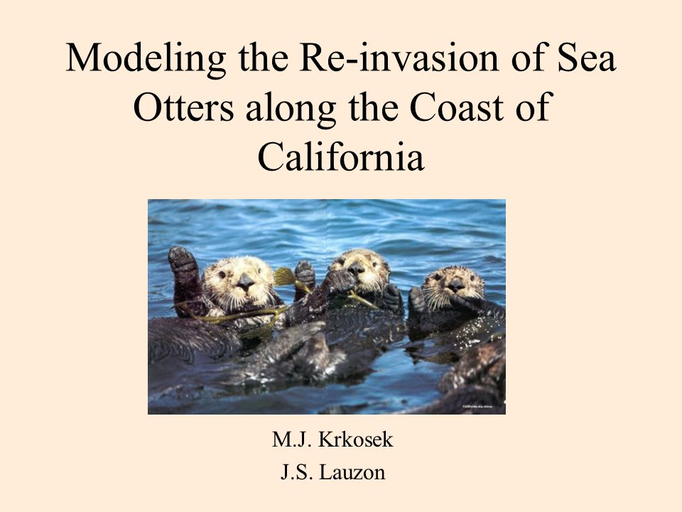 Modeling the Re-invasion of Sea Otters along the Coast of California M.J. Krkosek J.S. Lauzon