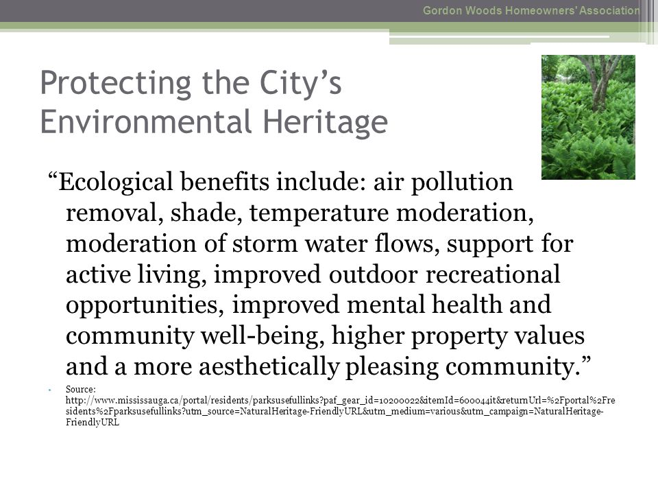 Protecting the City's Environmental Heritage Ecological benefits include: air pollution removal, shade, temperature moderation, moderation of storm water flows, support for active living, improved outdoor recreational opportunities, improved mental health and community well-being, higher property values and a more aesthetically pleasing community. Source: http://www.mississauga.ca/portal/residents/parksusefullinks paf_gear_id=10200022&itemId=600044it&returnUrl=%2Fportal%2Fre sidents%2Fparksusefullinks utm_source=NaturalHeritage-FriendlyURL&utm_medium=various&utm_campaign=NaturalHeritage- FriendlyURL Gordon Woods Homeowners Association