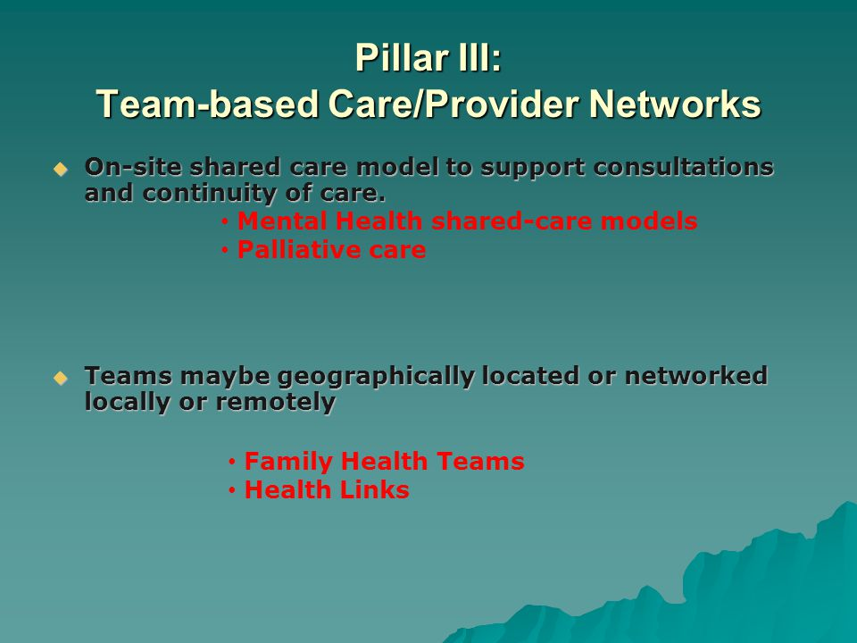 Pillar III: Team-based Care/Provider Networks  On-site shared care model to support consultations and continuity of care.