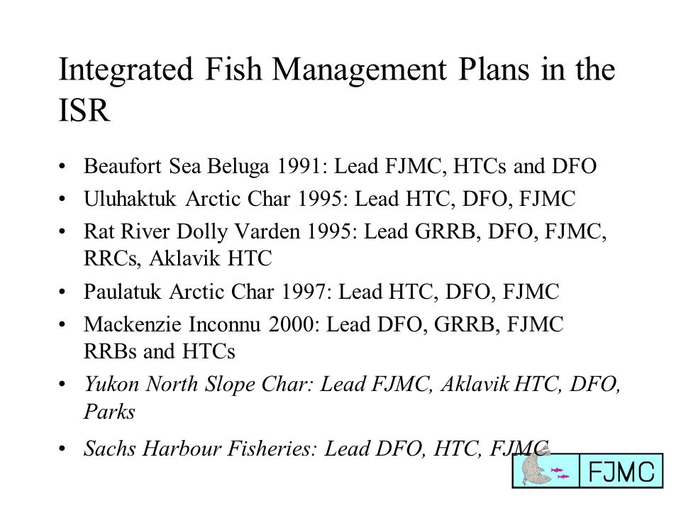 Integrated Fish Management Plans in the ISR Beaufort Sea Beluga 1991: Lead FJMC, HTCs and DFO Uluhaktuk Arctic Char 1995: Lead HTC, DFO, FJMC Rat River Dolly Varden 1995: Lead GRRB, DFO, FJMC, RRCs, Aklavik HTC Paulatuk Arctic Char 1997: Lead HTC, DFO, FJMC Mackenzie Inconnu 2000: Lead DFO, GRRB, FJMC RRBs and HTCs Yukon North Slope Char: Lead FJMC, Aklavik HTC, DFO, Parks Sachs Harbour Fisheries: Lead DFO, HTC, FJMC