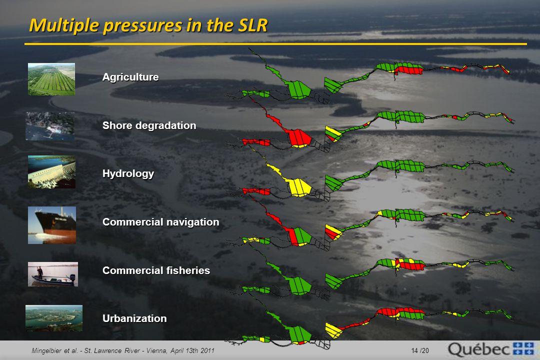 Mingelbier et al. - St. Lawrence River - Vienna, April 13th 2011 14 /20 Multiple pressures in the SLR Agriculture Shore degradation Hydrology Commerci