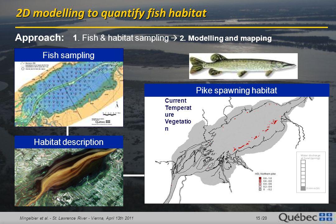 Mingelbier et al. - St. Lawrence River - Vienna, April 13th 2011 15 /20 Fish sampling Habitat description Pike spawning habitat Approach: 1. Fish & ha