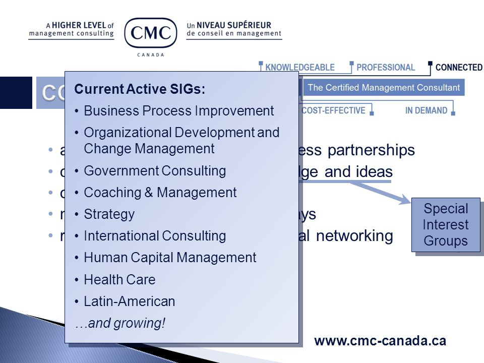 associate relationships and business partnerships opportunity for sharing of knowledge and ideas overcome professional isolation mentoring relationships – both ways regional, national, and international networking   Current Active SIGs: Business Process Improvement Organizational Development and Change Management Government Consulting Coaching & Management Strategy International Consulting Human Capital Management Health Care Latin-American …and growing.