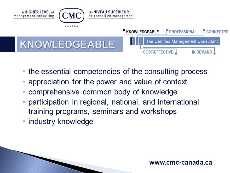 the essential competencies of the consulting process appreciation for the power and value of context comprehensive common body of knowledge participation in regional, national, and international training programs, seminars and workshops industry knowledge