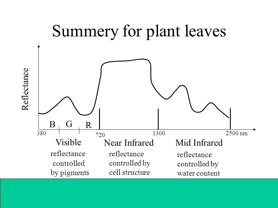 Summery for plant leaves Visible reflectance controlled by pigments B G R Near Infrared reflectance controlled by cell structure Mid Infrared reflectance controlled by water content Reflectance 720 1300 2500 nm380