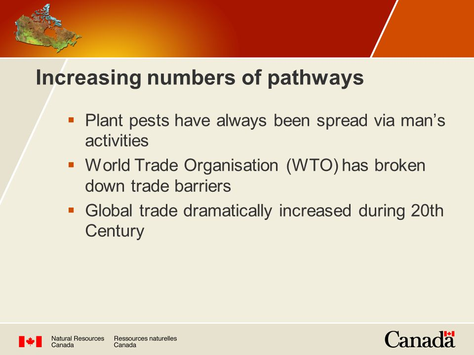Increasing numbers of pathways Source: WTO data http://people.hofstra.edu/geotrans/eng/ch5en/conc5en/worldexports.html