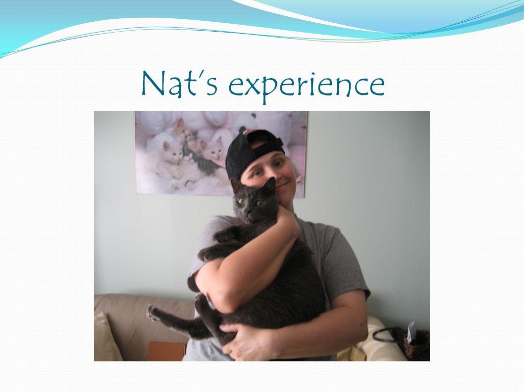 Nat's experience