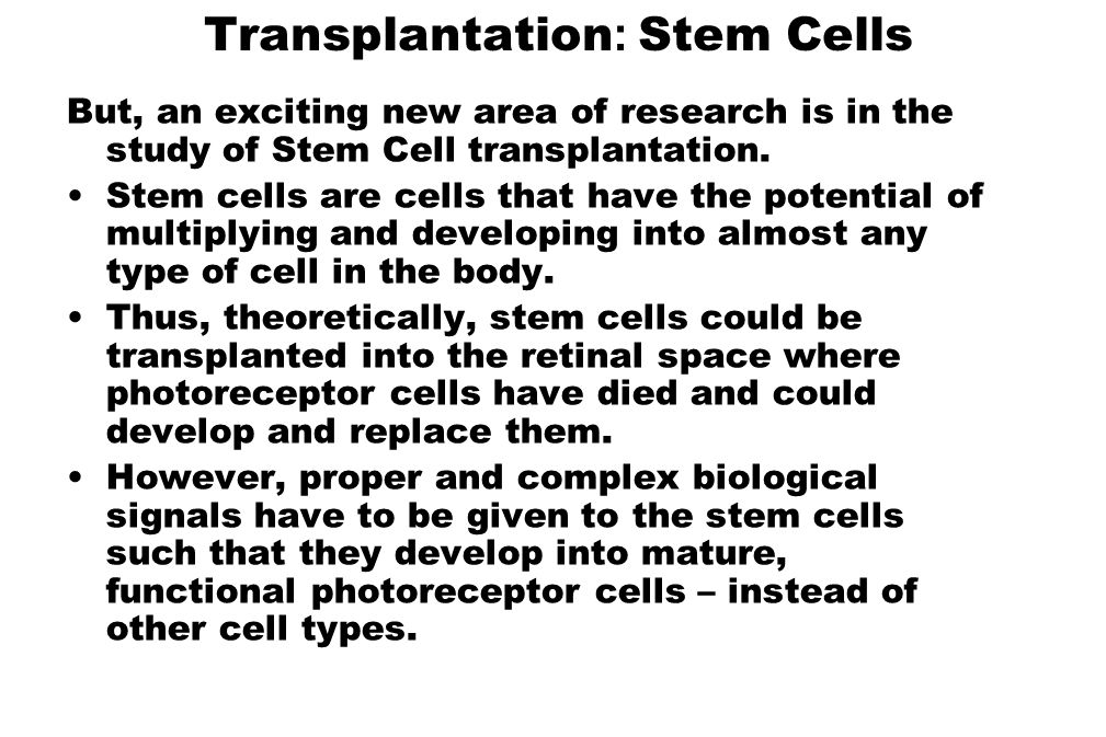 Transplantation : Stem Cells But, an exciting new area of research is in the study of Stem Cell transplantation. Stem cells are cells that have the po