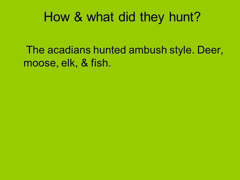 How & what did they hunt? The acadians hunted ambush style. Deer, moose, elk, & fish.