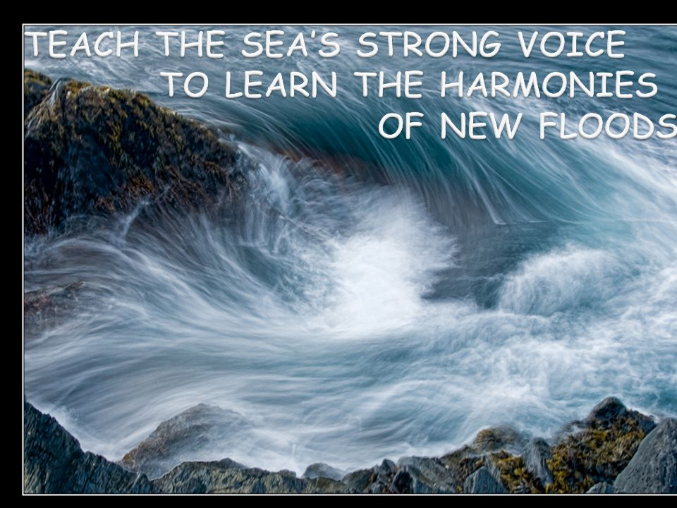 Setting the Context Sea's Strong Voice – Today's Realities New Floods – Changing Health System, Professions Harmonies of New Floods – Transforming Practice and Research Readiness for and Response to Trust Given You