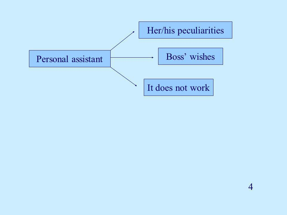 Personal assistant Her/his peculiarities Boss' wishes It does not work 4