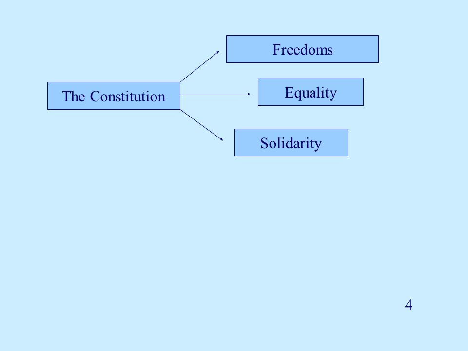 The Constitution Freedoms Equality Solidarity 4