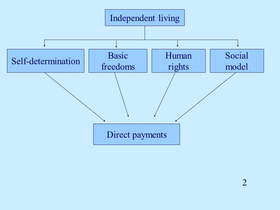 Independent living Self-determination Basic freedoms Human rights Social model Direct payments 2