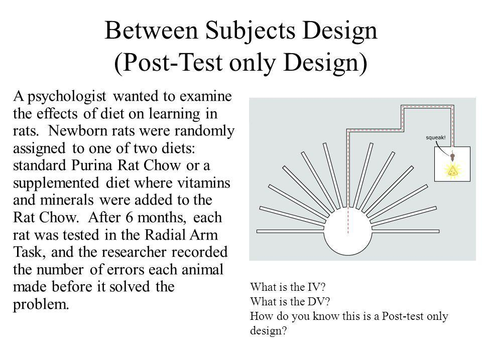 Between Subjects Design (Post-Test only Design) A psychologist wanted to examine the effects of diet on learning in rats.