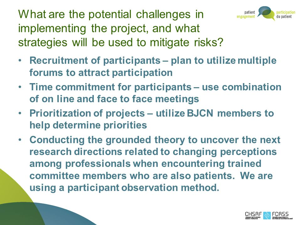 What are the potential challenges in implementing the project, and what strategies will be used to mitigate risks.