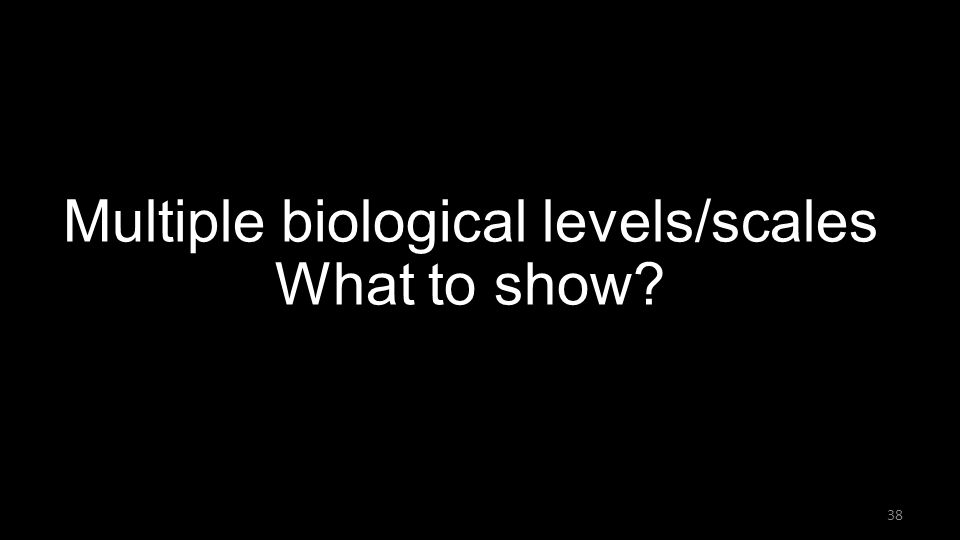 Multiple biological levels/scales What to show 38