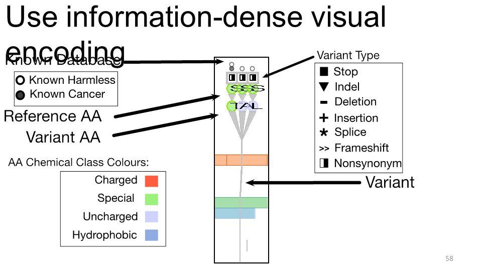 Use information-dense visual encoding 58
