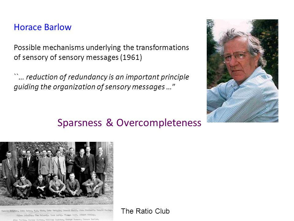 Horace Barlow Possible mechanisms underlying the transformations of sensory of sensory messages (1961) ``… reduction of redundancy is an important principle guiding the organization of sensory messages … Sparsness & Overcompleteness The Ratio Club