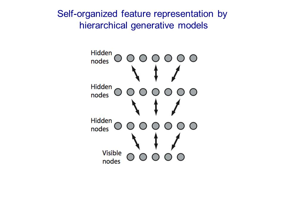 Self-organized feature representation by hierarchical generative models