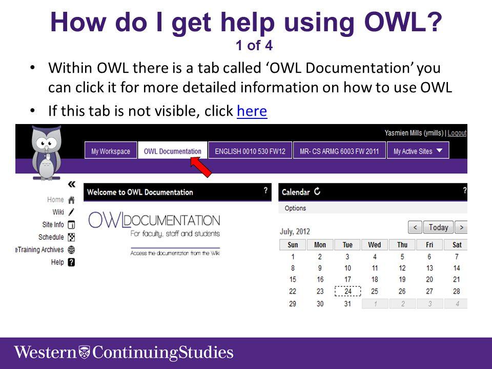 How do I get help using OWL.