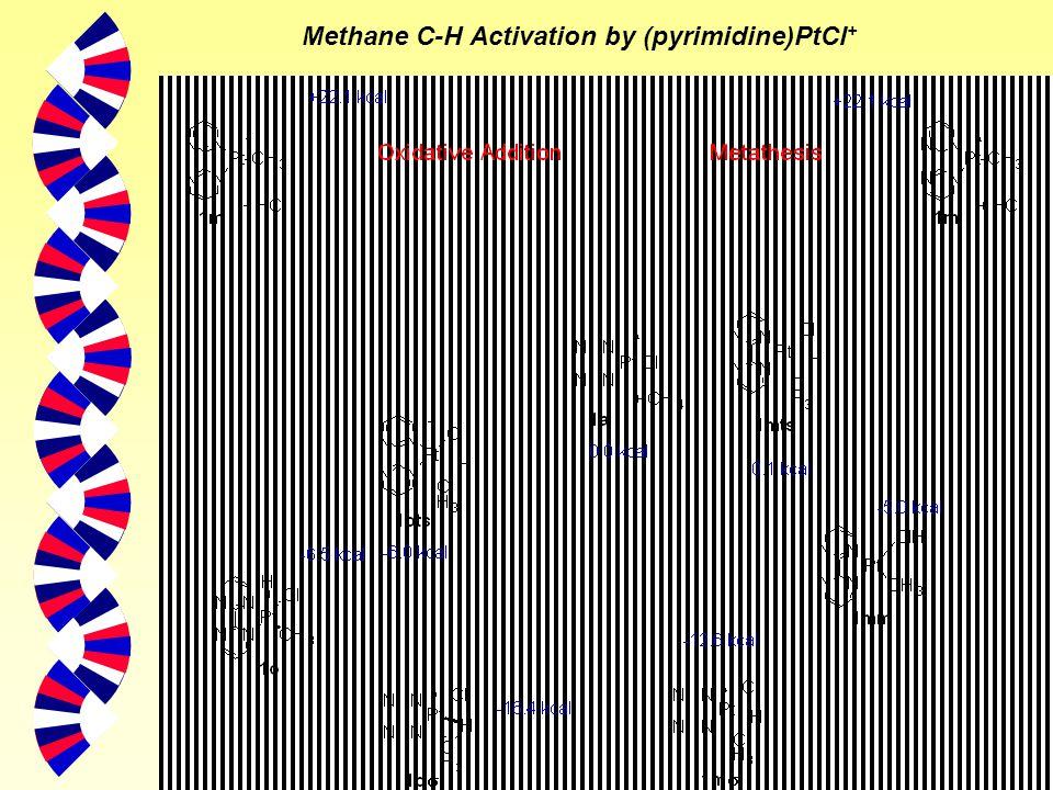 9 Methane C-H Activation by (pyrimidine)PtCl +