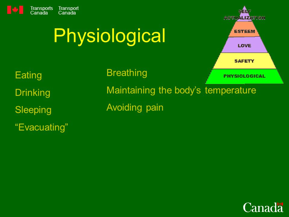 Transports Canada Transport Canada Physiological Eating Drinking Sleeping Evacuating Breathing Maintaining the body's temperature Avoiding pain