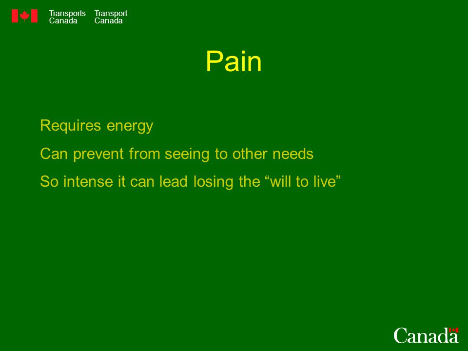 "Transports Canada Transport Canada Pain Requires energy Can prevent from seeing to other needs So intense it can lead losing the ""will to live"""
