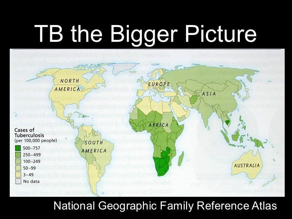 TB the Bigger Picture National Geographic Family Reference Atlas