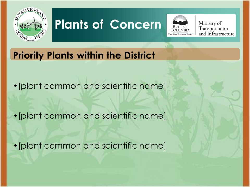Priority Plants within the District [plant common and scientific name] Plants of Concern