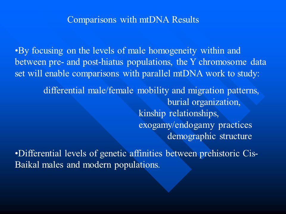 By focusing on the levels of male homogeneity within and between pre- and post-hiatus populations, the Y chromosome data set will enable comparisons with parallel mtDNA work to study: differential male/female mobility and migration patterns, burial organization, kinship relationships, exogamy/endogamy practices demographic structure Differential levels of genetic affinities between prehistoric Cis- Baikal males and modern populations.