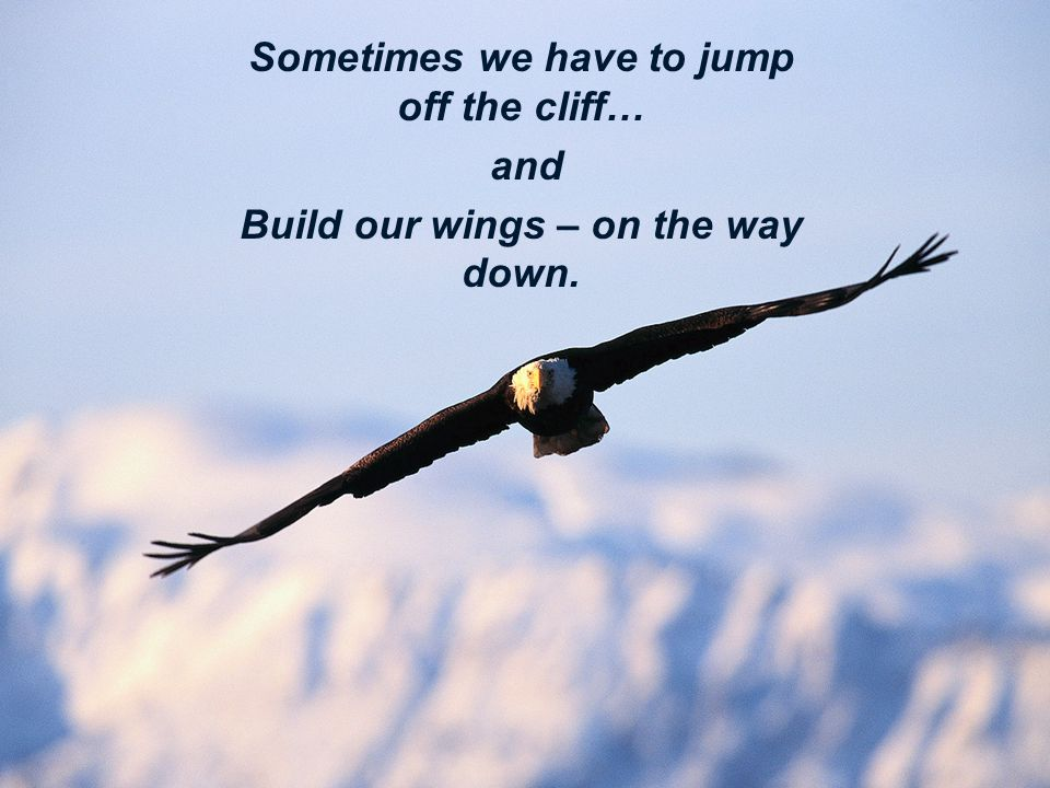 Sometimes we have to jump off the cliff… and Build our wings – on the way down.