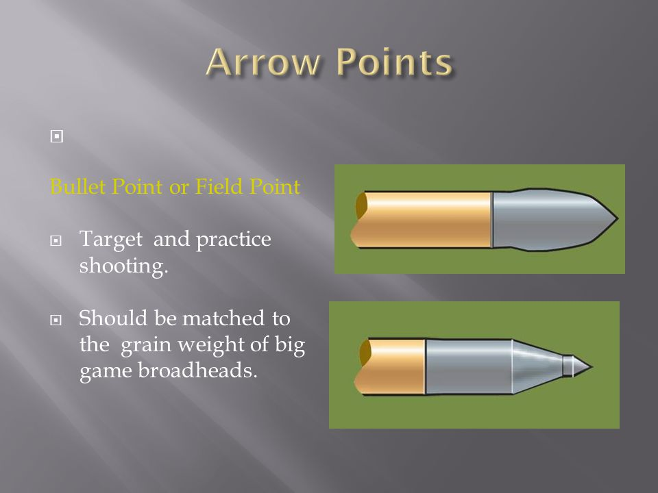  Bullet Point or Field Point  Target and practice shooting.  Should be matched to the grain weight of big game broadheads.