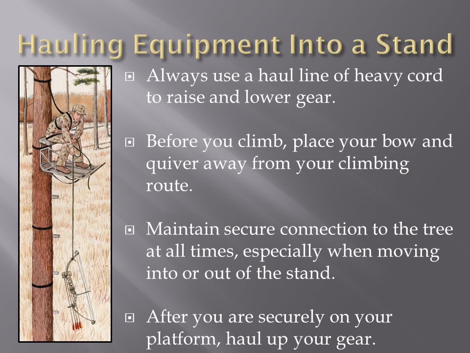  Always use a haul line of heavy cord to raise and lower gear.  Before you climb, place your bow and quiver away from your climbing route.  Maint