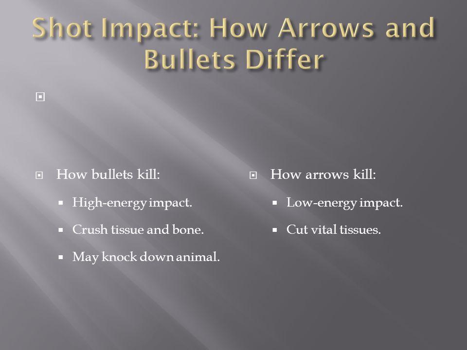   How bullets kill:  High-energy impact.  Crush tissue and bone.  May knock down animal.  How arrows kill:  Low-energy impact.  Cut vital tiss