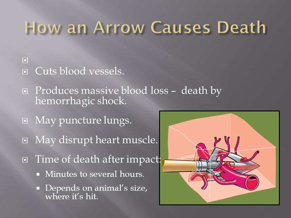   Cuts blood vessels.  Produces massive blood loss – death by hemorrhagic shock.  May puncture lungs.  May disrupt heart muscle.  Time of death