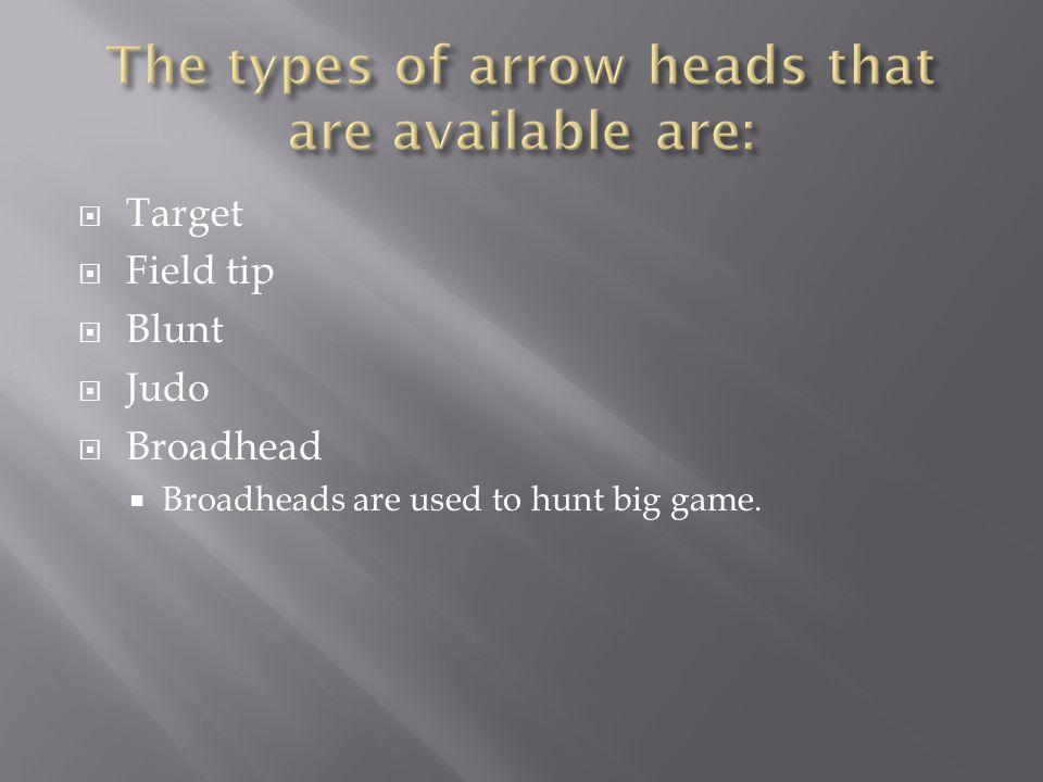  Target  Field tip  Blunt  Judo  Broadhead  Broadheads are used to hunt big game.