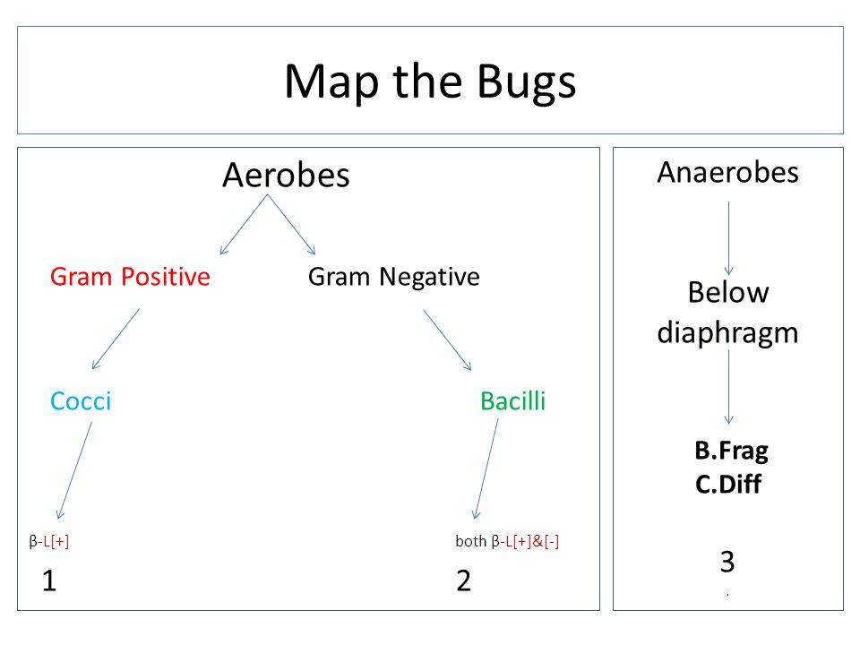 Aerobes Gram Positive Gram Negative Cocci Bacilli β-L[+] both β-L[+]&[-] 1 2 Map the Bugs Anaerobes Below diaphragm B.Frag C.Diff 3.