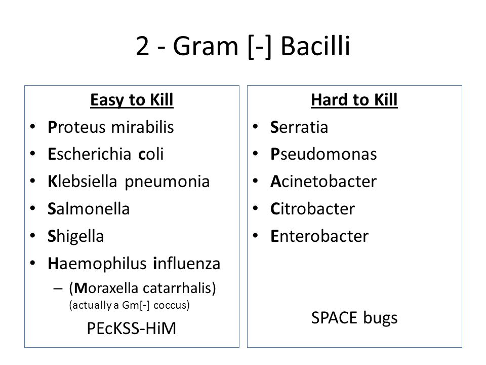 2 - Gram [-] Bacilli Easy to Kill Proteus mirabilis Escherichia coli Klebsiella pneumonia Salmonella Shigella Haemophilus influenza – (Moraxella catarrhalis) (actually a Gm[-] coccus) PEcKSS-HiM Hard to Kill Serratia Pseudomonas Acinetobacter Citrobacter Enterobacter SPACE bugs