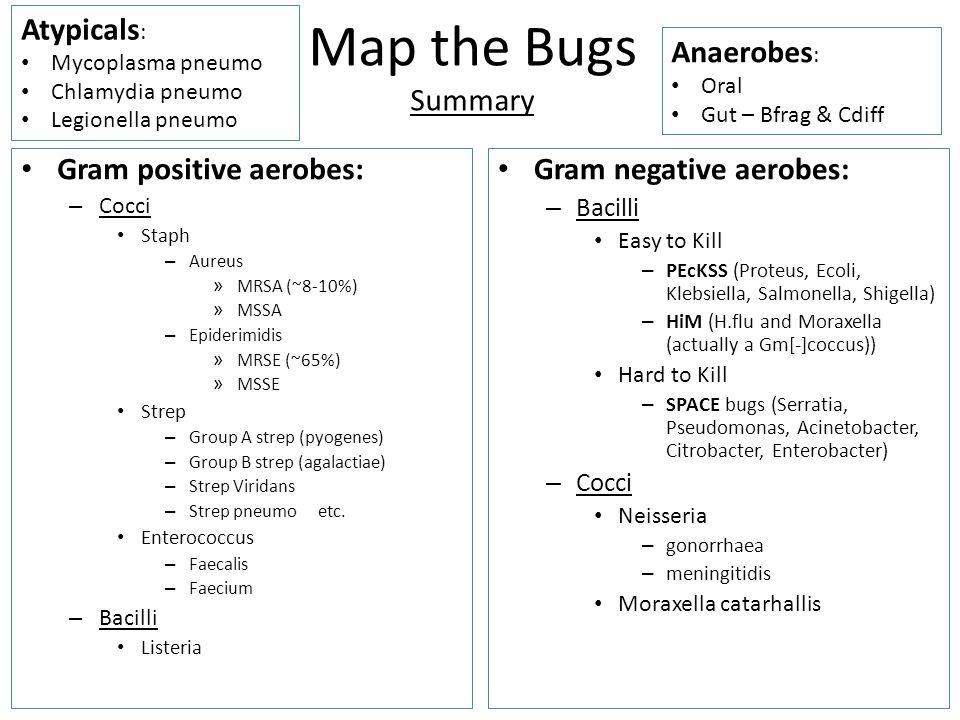 Map the Bugs Summary Gram positive aerobes: – Cocci Staph – Aureus » MRSA (~8-10%) » MSSA – Epiderimidis » MRSE (~65%) » MSSE Strep – Group A strep (pyogenes) – Group B strep (agalactiae) – Strep Viridans – Strep pneumo etc.