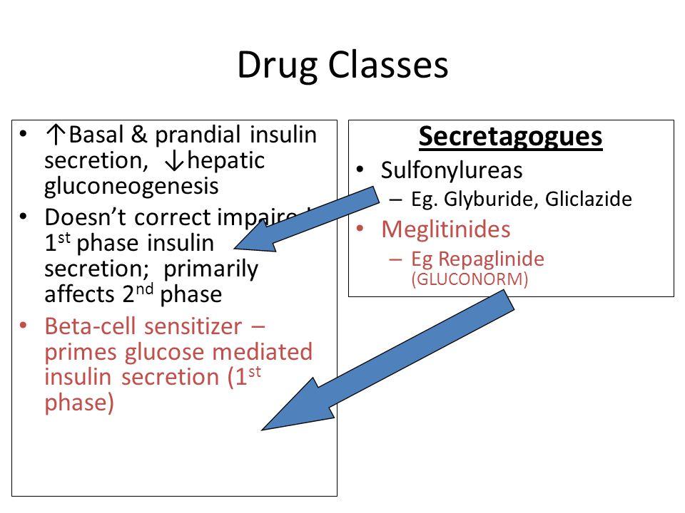 Drug Classes ↑Basal & prandial insulin secretion, ↓hepatic gluconeogenesis Doesn't correct impaired 1 st phase insulin secretion; primarily affects 2