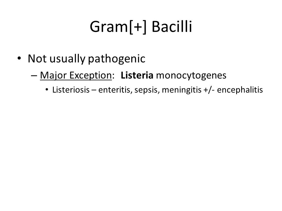 Gram[+] Bacilli Not usually pathogenic – Major Exception: Listeria monocytogenes Listeriosis – enteritis, sepsis, meningitis +/- encephalitis