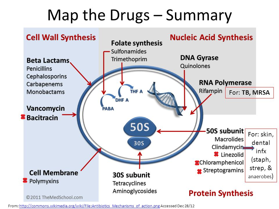 Map the Drugs – Summary From: http://commons.wikimedia.org/wiki/File:Antibiotics_Mechanisms_of_action.png Accessed Dec 28/12http://commons.wikimedia.org/wiki/File:Antibiotics_Mechanisms_of_action.png For: TB, MRSA For: skin, dental infx (staph, strep, & anaerobes )