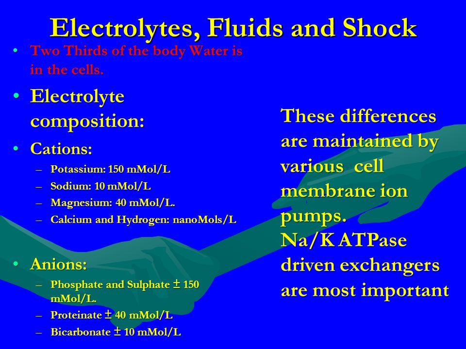 Electrolytes, Fluids and Shock Two Thirds of the body Water is in the cells.Two Thirds of the body Water is in the cells. Electrolyte composition:Elec