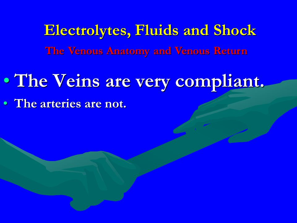 Electrolytes, Fluids and Shock The Veins are very compliant.The Veins are very compliant. The arteries are not.The arteries are not. The Venous Anatom