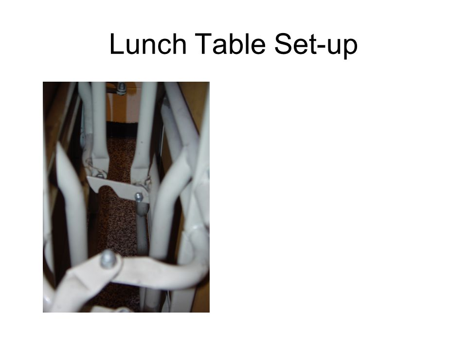 Lunch Table Set-up