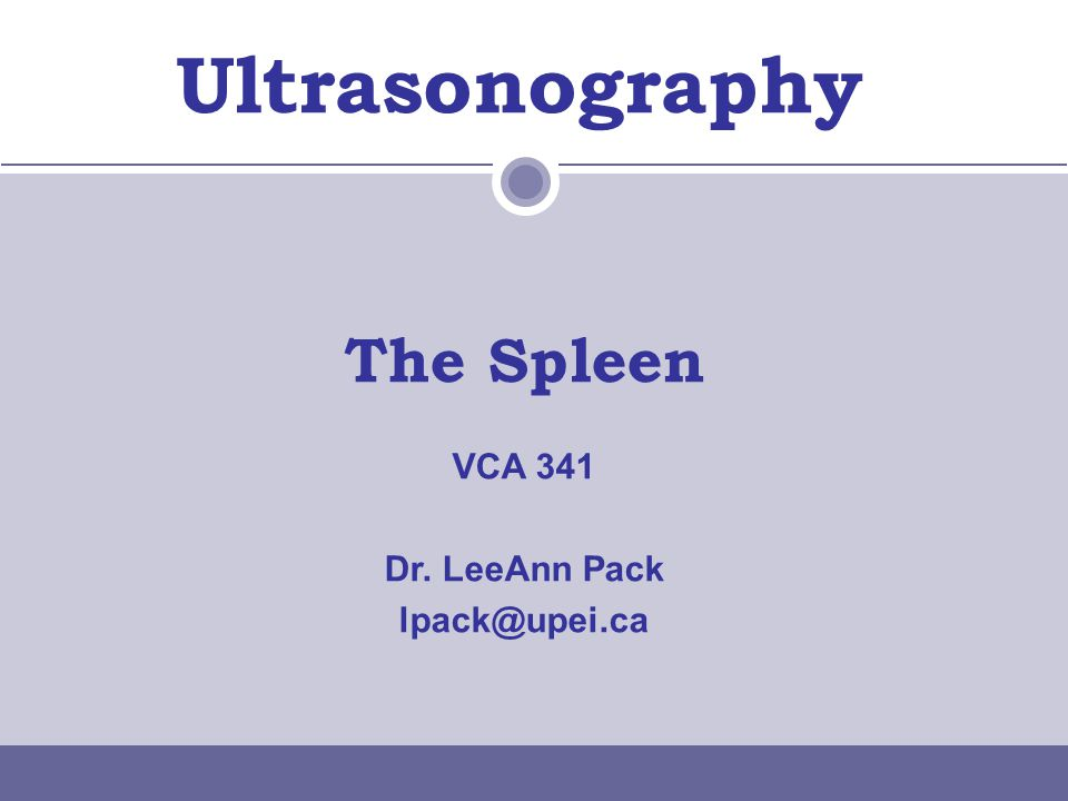 Spleen Focal/Multifocal Lesions  More common than diffuse  Anechoic –Cysts Hematoma/neoplasia  Hypoechoic –Neoplasia –Abscess –Acute infarct –Nodular hyperplasia