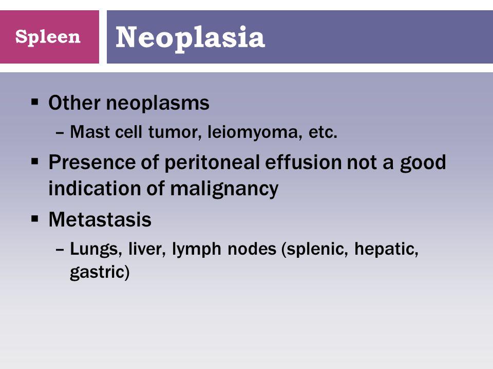 Spleen Neoplasia  Other neoplasms –Mast cell tumor, leiomyoma, etc.  Presence of peritoneal effusion not a good indication of malignancy  Metastasi