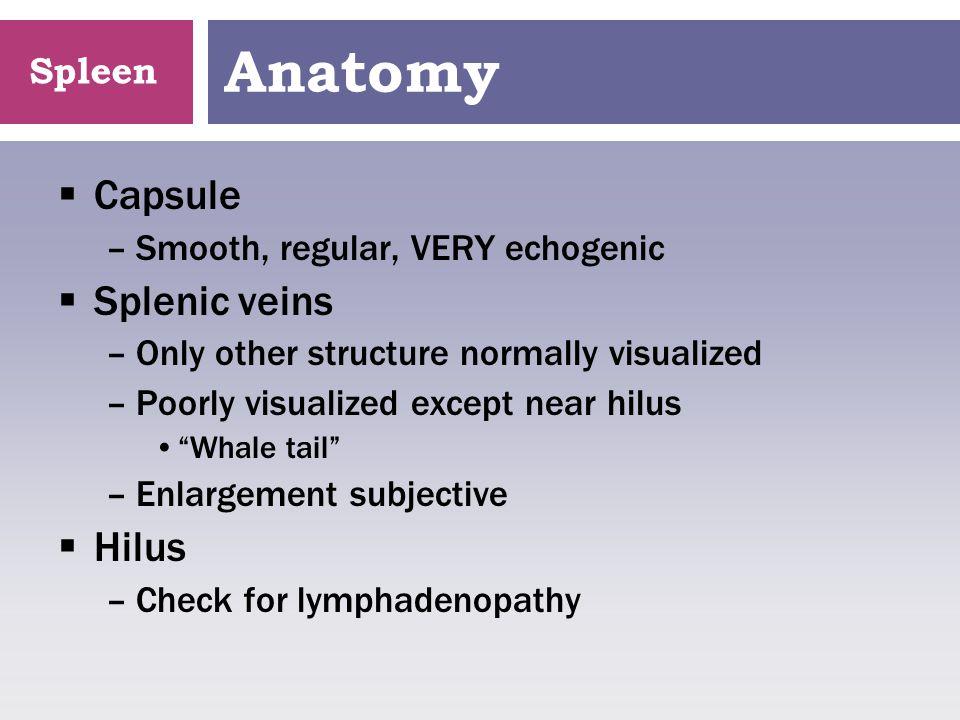 Spleen Splenic Thrombus