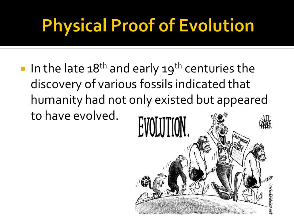  In the late 18 th and early 19 th centuries the discovery of various fossils indicated that humanity had not only existed but appeared to have evolved.