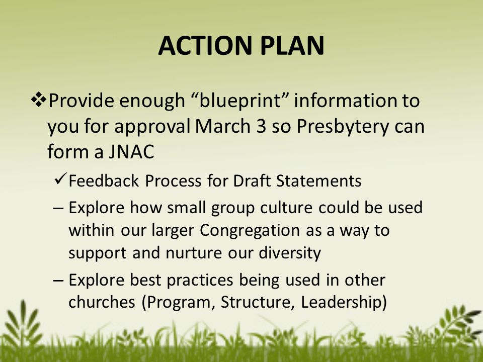 ACTION PLAN  Provide enough blueprint information to you for approval March 3 so Presbytery can form a JNAC Feedback Process for Draft Statements – Explore how small group culture could be used within our larger Congregation as a way to support and nurture our diversity – Explore best practices being used in other churches (Program, Structure, Leadership)